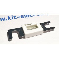 Fusible DIN R1025 500A