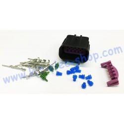 Pack prise DELPHI GT150 10...