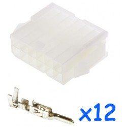 MOLEX female 12 pin...