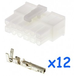 MOLEX male 12 pin connector...
