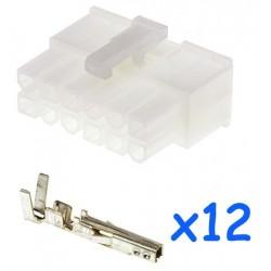 MOLEX male 12 pin connector...