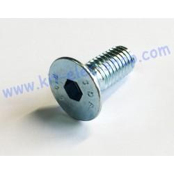 Vis FHC M8x20 zinc