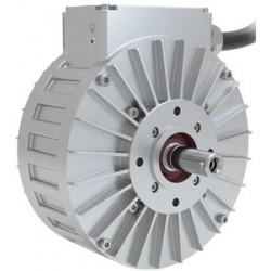 Heinzmann PGS100 Generator