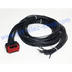 Cable for 23-pin AMPSEAL...