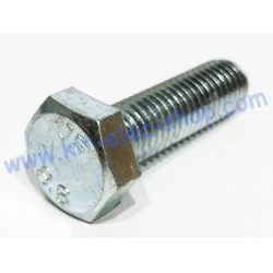 TH screw M10x40 zinc