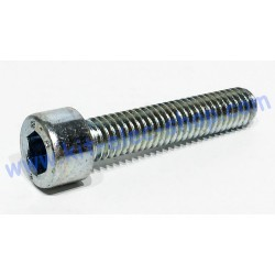 CHC screw M6x30 zinc