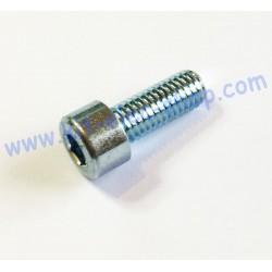 Vis CHC M8x20 zinc
