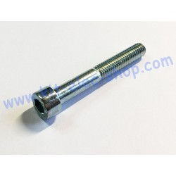 CHC screw M6x45 zinc