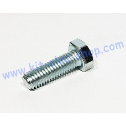 TH screw M8x25 zinc