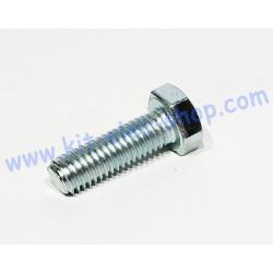 TH screw M8x30 zinc