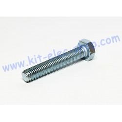 TH screw M10x60 zinc