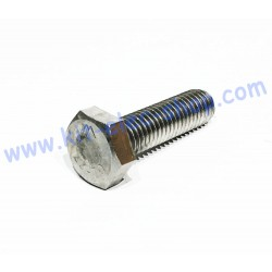 Screw TH M10x35 stainless...