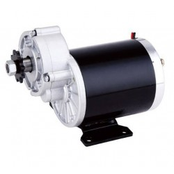 36V 600W DC motor with gearbox